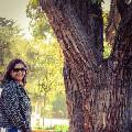 Home Tutor Kavitha Vijay 600044 T1ced56709ef0ff